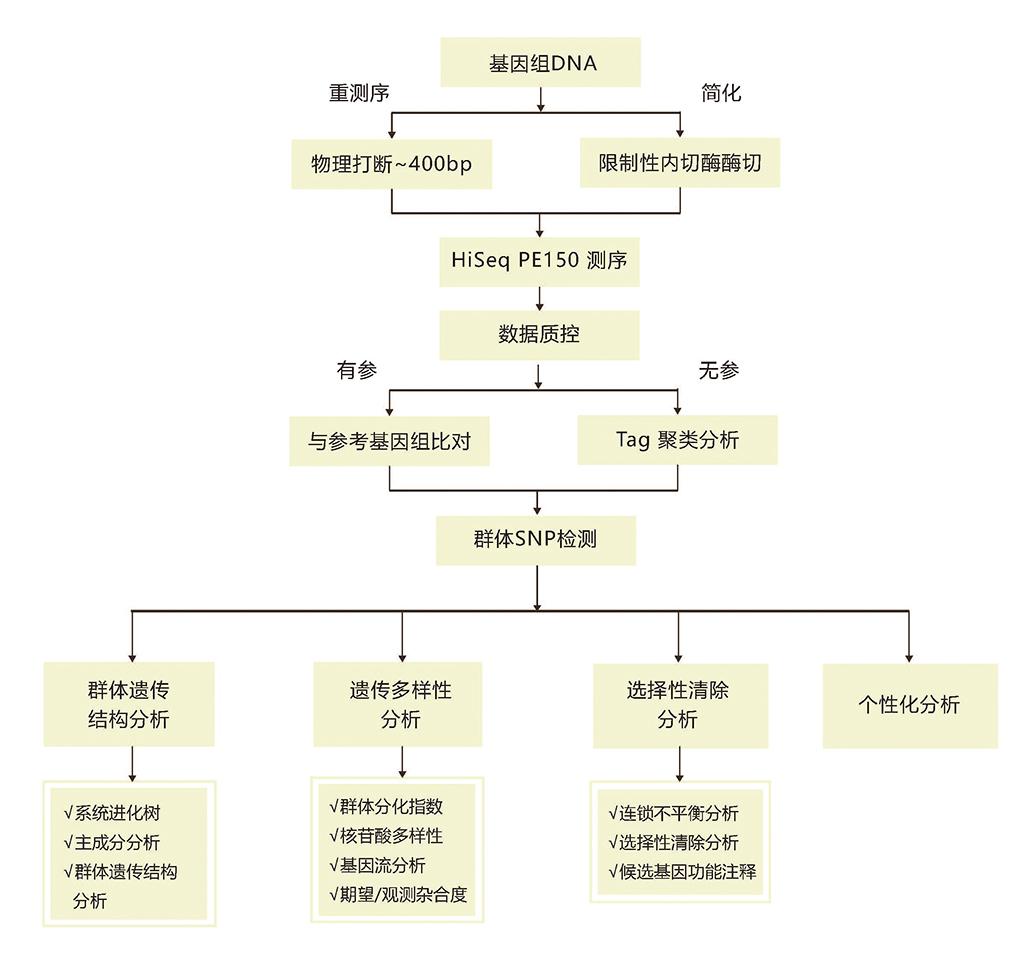 群体进化技术路线.jpg
