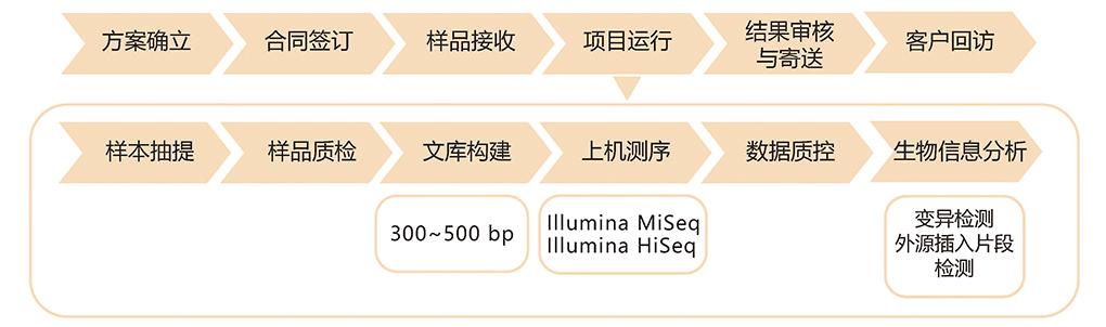 真菌国际重测序技术路线.jpg